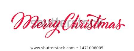 neşeli · Noel · matbaacılık · el · yazısı · vektör · kar · taneleri - stok fotoğraf © jeksongraphics