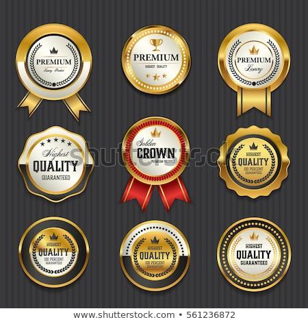 gouden · gunning · badge · ontwerp · vector · business - stockfoto © SArts