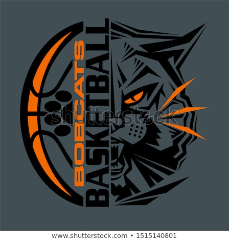 wildcat basketball ball mascot stock photo © krisdog