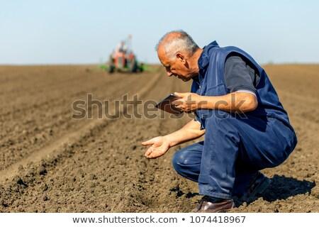 фермер · стороны · изолированный · белый · области · рабочих - Сток-фото © aikon