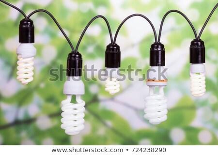 Közelkép zöld fluoreszkáló villanykörte technológia elektromosság Stock fotó © IS2