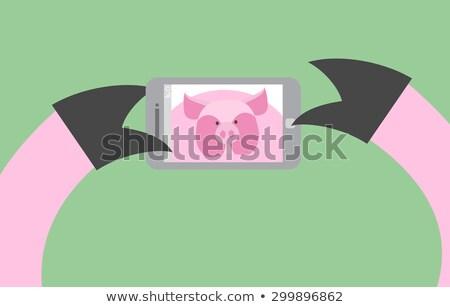 счастливым · свинья · современных · вектора · иллюстрация - Сток-фото © popaukropa