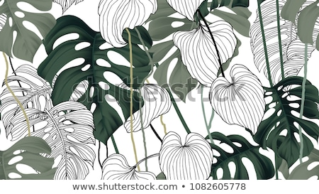 Stock photo: Seamless Pattern With Tropical Leaves On White Background