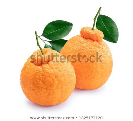 Fatias fresco tangerina tigela branco laranja Foto stock © Digifoodstock