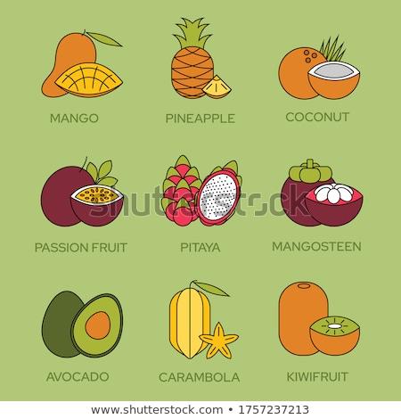 Mango and Pitaya Carambola Posters Set Vector Stock photo © robuart