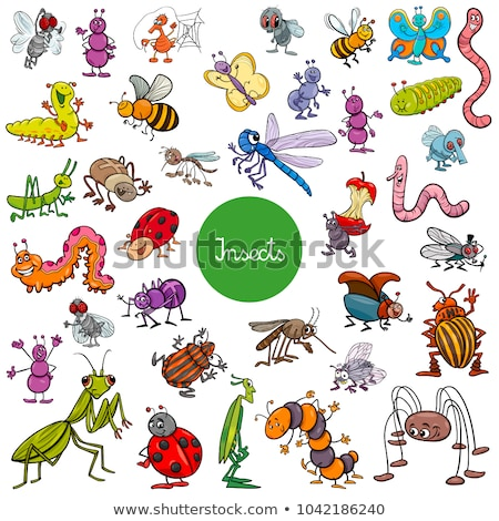 Vector cartoon insect clip art cute sprinkhaan Stockfoto © VetraKori