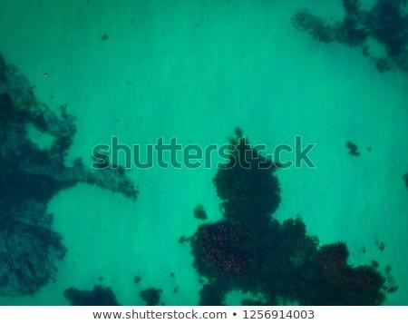 naturelles · mer · turquoise · eau · haut - photo stock © vichie81