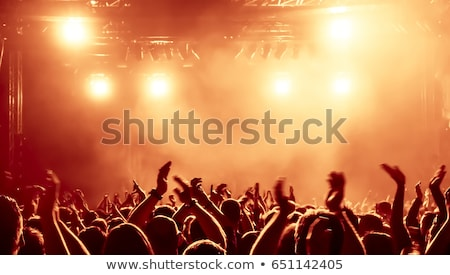 Live act of rock band on stage with audience. Stock photo © lichtmeister