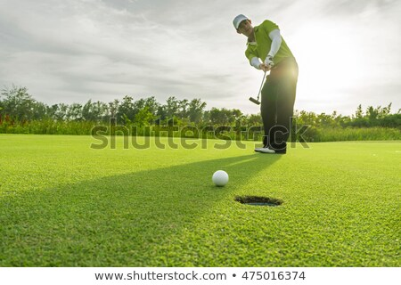 Golfer putting ball into cup. Stock photo © lichtmeister