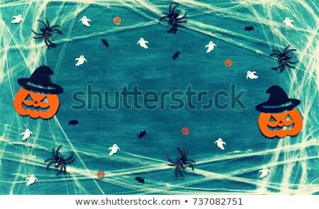 Spin spinneweb scary gezicht halloween achtergrond Stockfoto © SArts