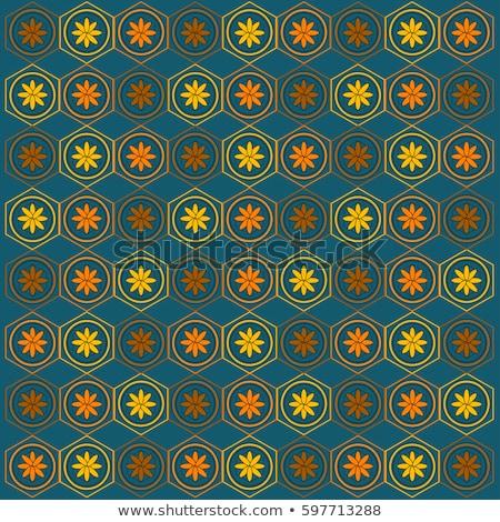 Vecteur résumé linéaire grille Photo stock © samolevsky