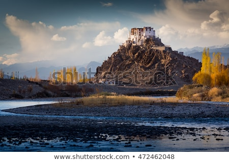 Stakna monastery, Ladakh, India Stock photo © dmitry_rukhlenko