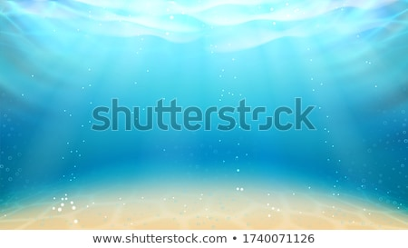 Underwater Ocean Sandy Bottom And Sunrays Vector Stock photo © pikepicture