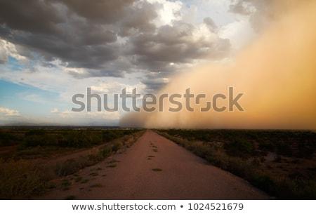 ほこり 嵐 クイーンズランド州 オーストラリア テクスチャ 建物 ストックフォト © ribeiroantonio