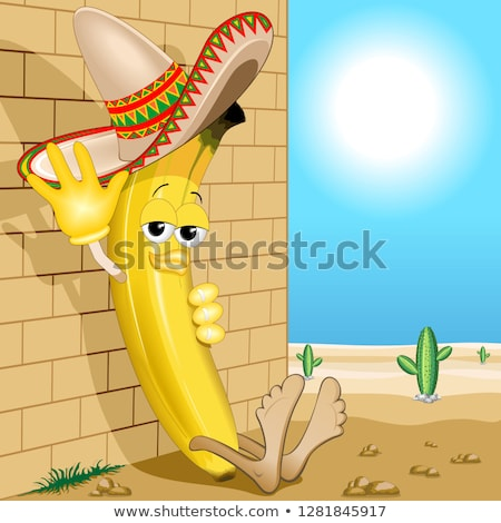 Mexican napping in the desert Stock photo © dayzeren