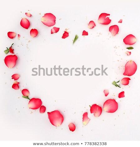 gold frame rose petals - photo #20