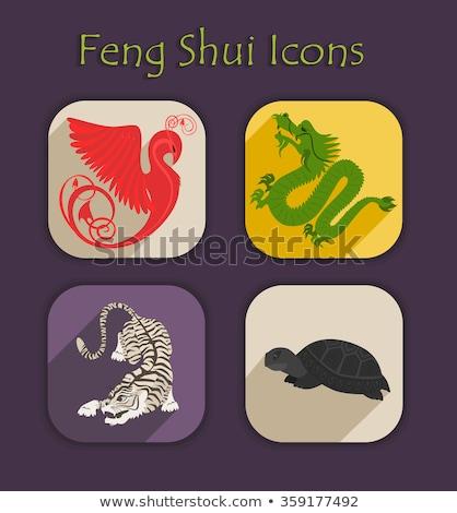 Feng shui dragón negro poder chino religión Foto stock © sahua