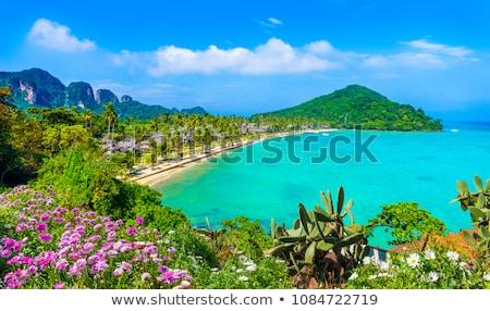 klein · eiland · Thailand · Blauw · zee · zomer - stockfoto © petrmalyshev