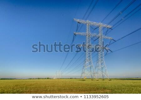 Nagyfeszültség távvezeték mező kék ég égbolt természet Stock fotó © artush