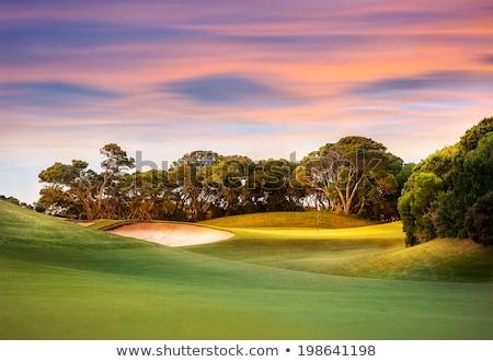 Belo campo de golfe céu árvore grama esportes Foto stock © rufous