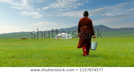 Mongolian tent on grassland Stock photo © bbbar
