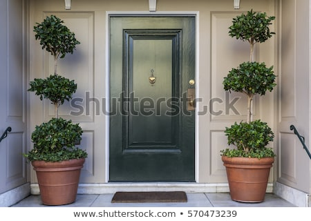 Zielone przednie drzwi domu zewnątrz front wejście Zdjęcia stock © Leonardi