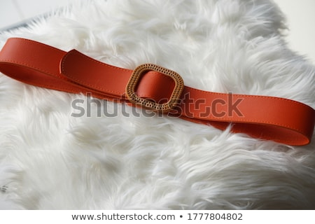 Women's Belt Stock photo © zhekos