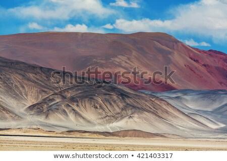 Tájkép északi Argentína hosszú egyenes út Stock fotó © elxeneize