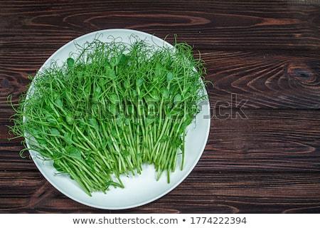 豌豆 · 白 · 盤 · 照片 · 綠色 · 叉 - 商業照片 © stevanovicigor