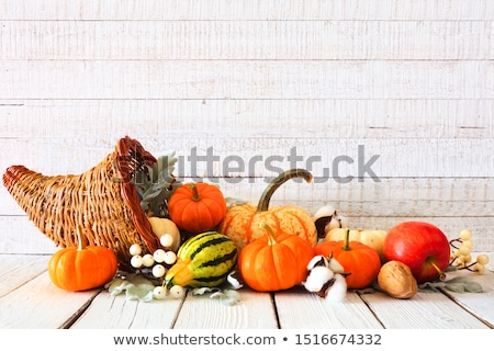 Autumn abundance Stock photo © Alegria111