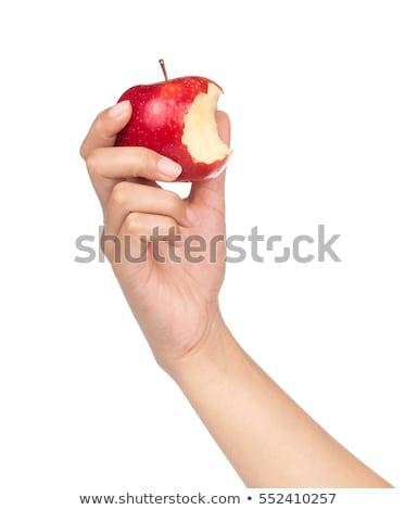 El kırmızı elma beyaz sağlık diyet Stok fotoğraf © dnsphotography