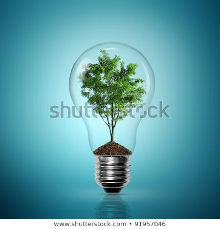 Tree Inside The Light Bulb Stok fotoğraf © Sarunyu_foto