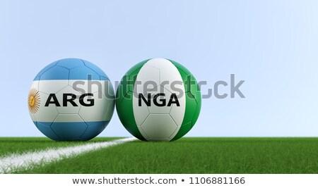 Nigeria · banderą · piłka · tekstury · piłka - zdjęcia stock © creisinger