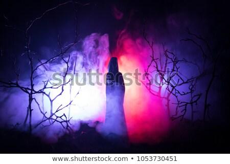 vampier · meisje · sexy · cocktail · glas · vrouw - stockfoto © jackybrown
