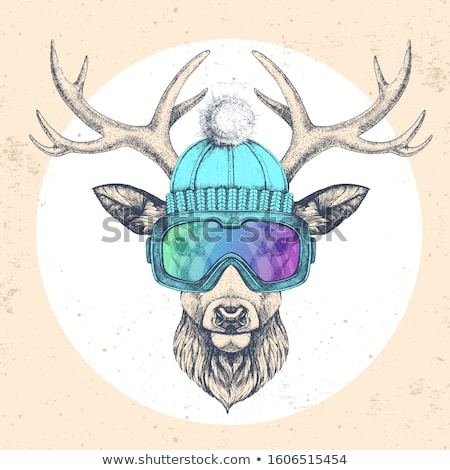 Hipster animals, vector vintage background Stock photo © kali