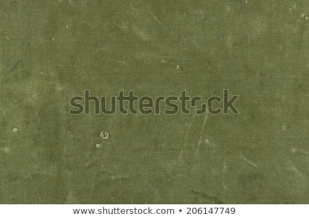 Zeytin yeşil pamuk doku arka plan Retro Stok fotoğraf © Zerbor