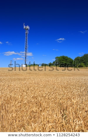 gsm · antenna · cielo · blu · telefono · metal · rete - foto d'archivio © kayco