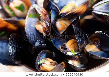 fresh mussel Stock photo © M-studio