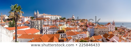 Traditional Lisbon, panorama Stock photo © joyr