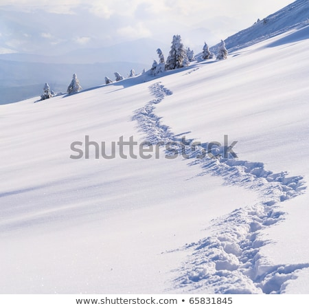 Winter mountains at sunny windy day Stock photo © BSANI
