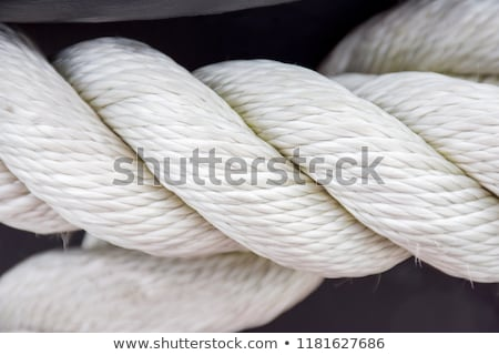 close up of rope part on white background Stock photo © ozaiachin