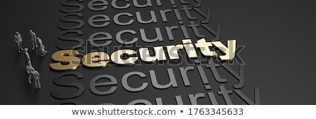 Sécurisé mot dictionnaire papier sécurité Photo stock © fuzzbones0