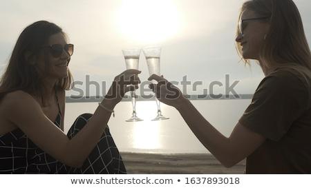 Lesbijek para szampana okulary ludzi Zdjęcia stock © dolgachov