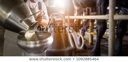 Milking animal Stock photo © bluering