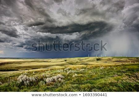 préri · út · viharfelhők · Saskatchewan · Kanada · mező - stock fotó © pictureguy