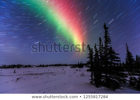 Star trails night Manitoba Canada Stock photo © pictureguy
