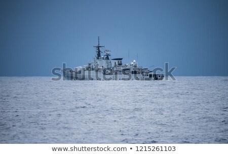 морем защита черный морские водоросли покрытый Сток-фото © paulfleet