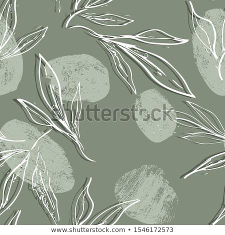 fehér · végtelenített · absztrakt · virágmintás · minta · klasszikus - stock fotó © cosveta