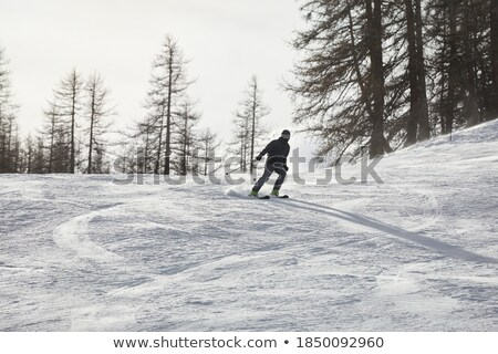 skier sliding from the snowy hill stock photo © orson