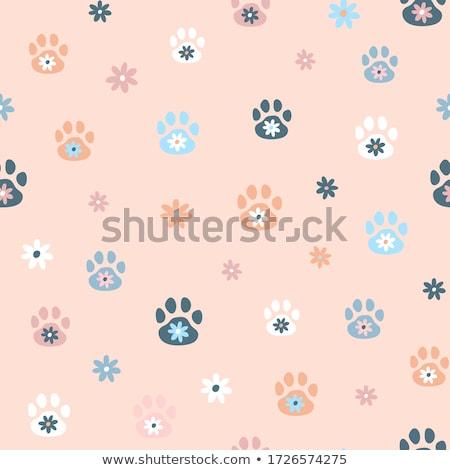 background texture with footprints Stock photo © balasoiu